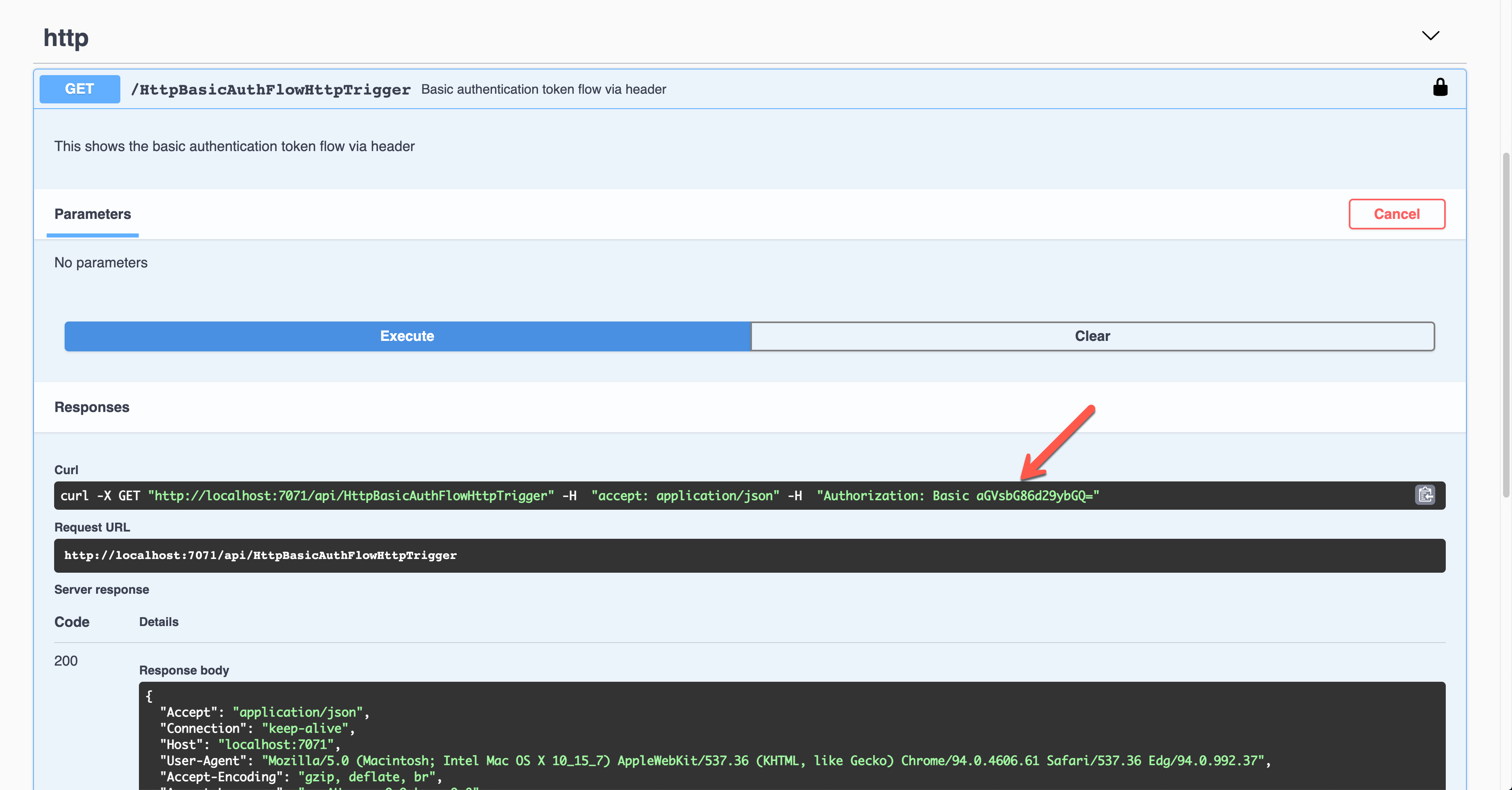 Swagger UI - Basis Auth - Result