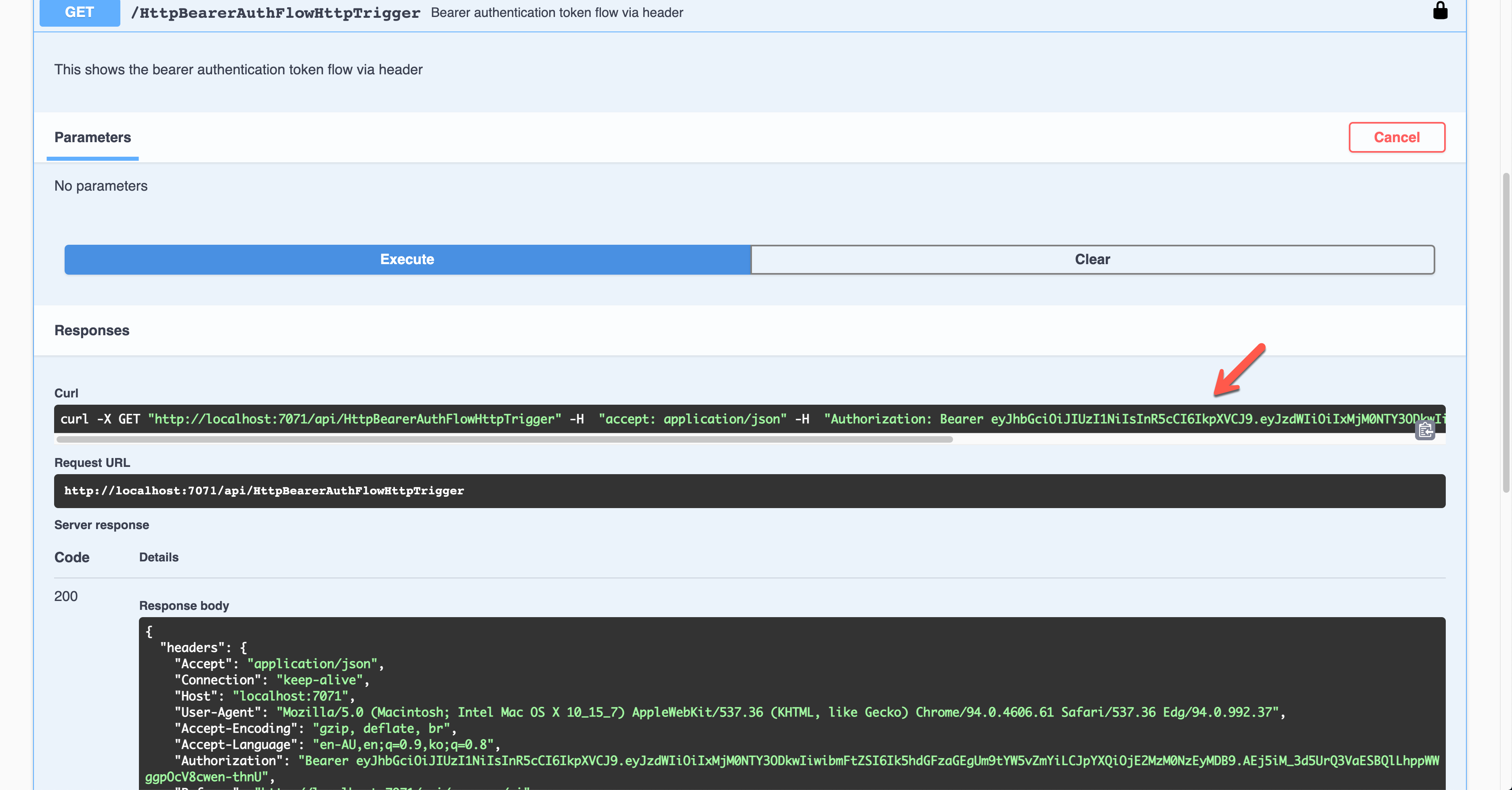 Swagger UI - Bearer Auth - Result